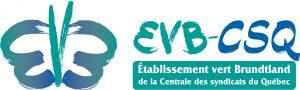 EVB-CSQ_horizon_process_typo_vecto