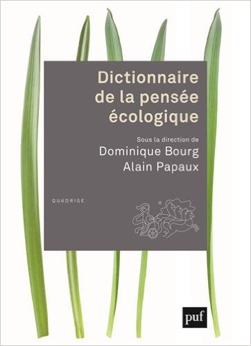 Diction_pensee_eco.jpg
