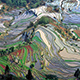 Terrace_field_yunnan_china_denoised-2